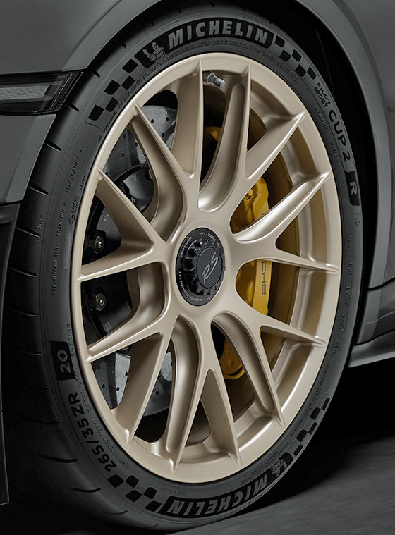 Michelin Pilot Sport Cup 2R 18 band